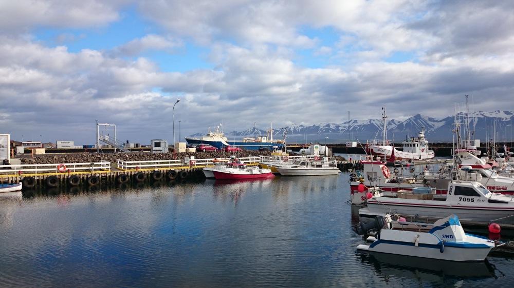 Dalvik Hafen (2)