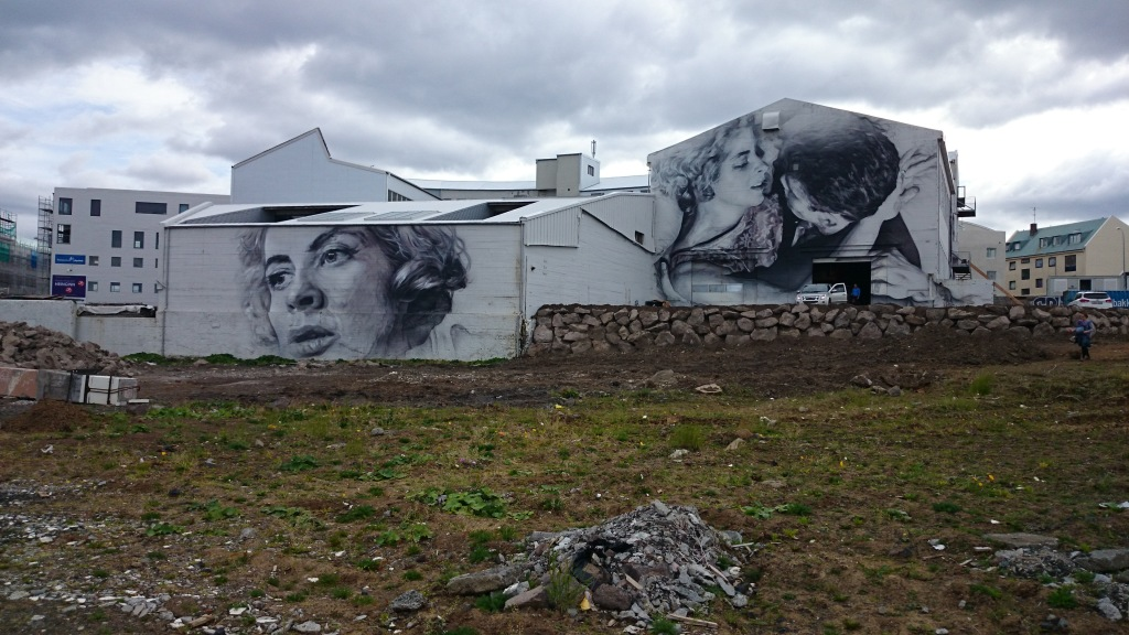 Reykjavik Wall Art
